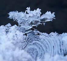 Icey fingerprint by Barrie Daniels