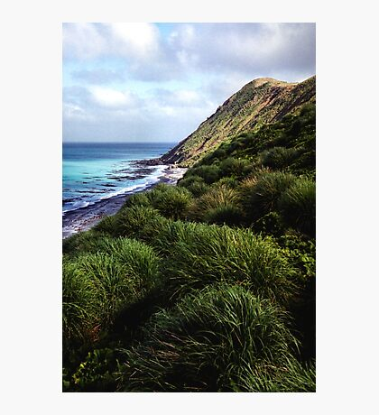 Coastal View, Maquarie Island Photographic Print