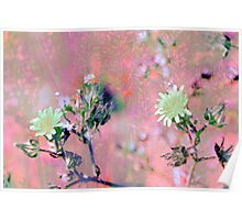 Botanical Abstract in Pastel VIII Poster