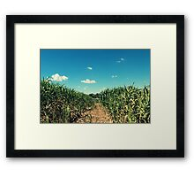 Trailing a way Framed Print