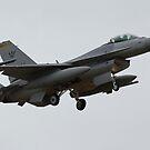 RSAF F-16CJ - 642 by Cecily McCarthy