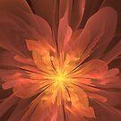 Bloom of Fire by Jaclyn Hughes