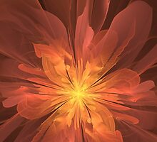 Bloom of Fire by Jaclyn Hughes