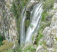 Minyon Falls, Nightcap National Park, Australia by Margaret  Hyde