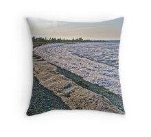 Belliveau Cove in the Winter Throw Pillow