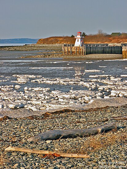 Belliveau Cove Lighthouse in Winter by David Davies