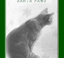 Christmas Pet Greeting Card - Waiting For Santa Paws by MotherNature2