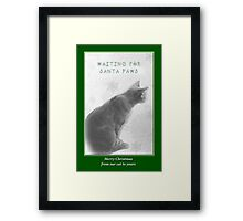 Christmas Pet Greeting Card - Waiting For Santa Paws Framed Print