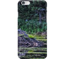 Home Within the Water iPhone Case/Skin