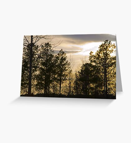 Friday Night Sunset at Cary in March Greeting Card