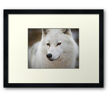 Hey Big Boy... Framed Print
