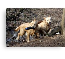Dual Water Fetching - 11 Canvas Print