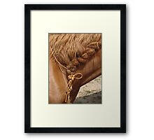 Braid Framed Print