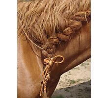 Braid Photographic Print