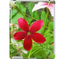 Frower Garden iPad Case/Skin