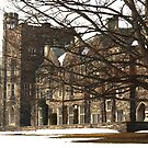 Old Graduate College by reindeer