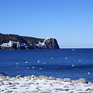 Red Head, Flatrock, Newfoundland by Annlynn Ward