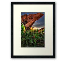 Overhang Framed Print