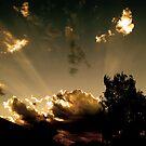A shy sun. by Aidan Doylè