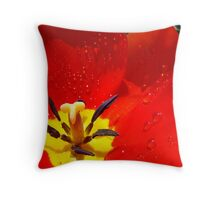Red Tulip Flower macro Spring Raindrops wet Baslee Troutman Throw Pillow