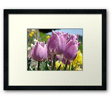 Floral Spring Lavender Tulip Flowers Garden Baslee Troutman Framed Print