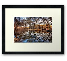 Tree Frames Framed Print