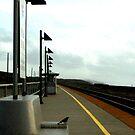 "DECIDING.  ""Fly or Take The Train?"" by waddleudo"