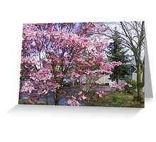 Pinky Pinkness Greeting Card