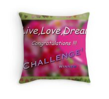 Challenge Banner Throw Pillow