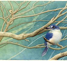 Forest kingfisher (Todiramphus macleayii) by Laura Grogan