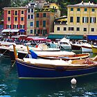 Portofino harbour by collpics