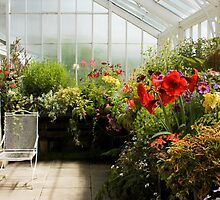 The Conservatory by nigelphoto