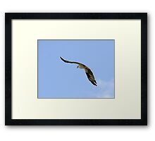 This Is Tough In 30 MPH Wind!! Framed Print
