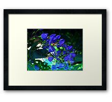 magestic blue Framed Print