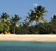 Beach Palms - Saline Bay, Mayreau, Grenadines by moor2sea