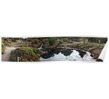 Botanic Panorama Poster