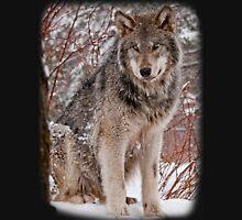 Wolf Shirt - 3 T-Shirt