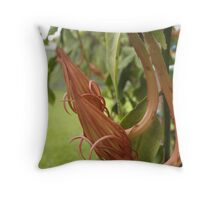 Queen of the night - unopened flower bud Throw Pillow