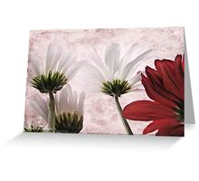 Red agains white Greeting Card