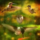 Hummingbird Extravaganza by Trudy Wilkerson