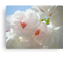 Tree Blossom Flowers White Pink Floral Baslee Troutman Canvas Print