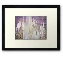 Spring is around the Corner Framed Print