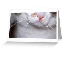 Nellie - Nose Greeting Card