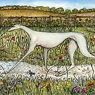 The Uncomparable Grace of a Greyhound by Elle J Wilson