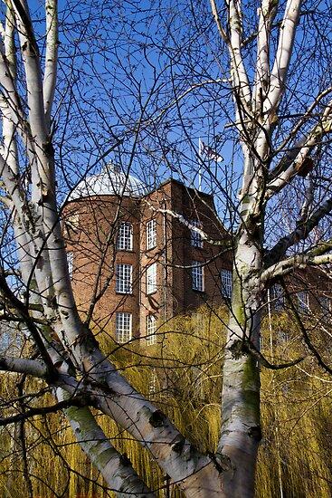 The Jarrold Building, Norwich. by BizziLizzy