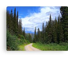 Bear Country (Big Mountain Ski Resort) Canvas Print