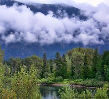 First Snow in the Flathead by rocamiadesign