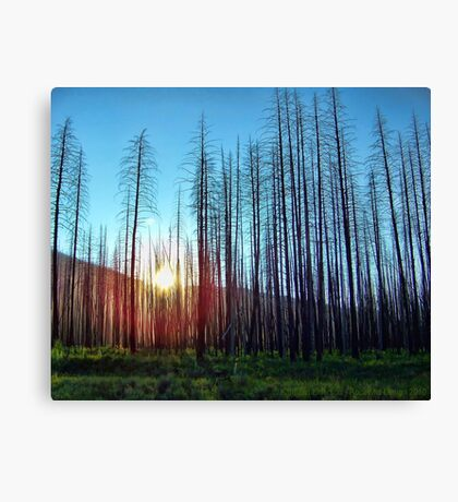 Hope - Great Northern Flats Canvas Print