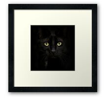 Black on Black.. Framed Print