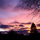 sunset potstam 20jan2011 by eddiebotha